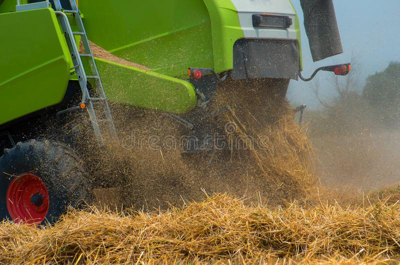 Combine harvester on a wheat field stock image