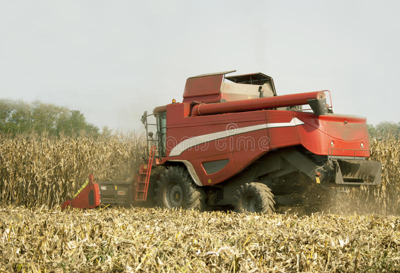 Combine harvester at work. Modern harvester combine on the corn field stock images