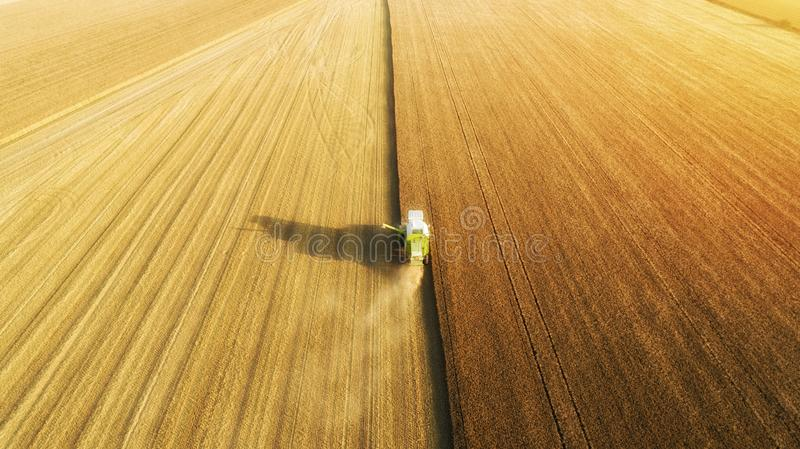 Combine harvester working on the large wheat field. stock photography