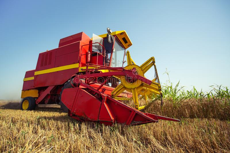 Combine harvester working on the wheat field. On the blue sky royalty free stock photo