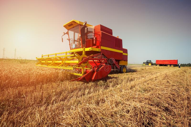 Combine harvester working on the wheat field. On the blue sky stock images