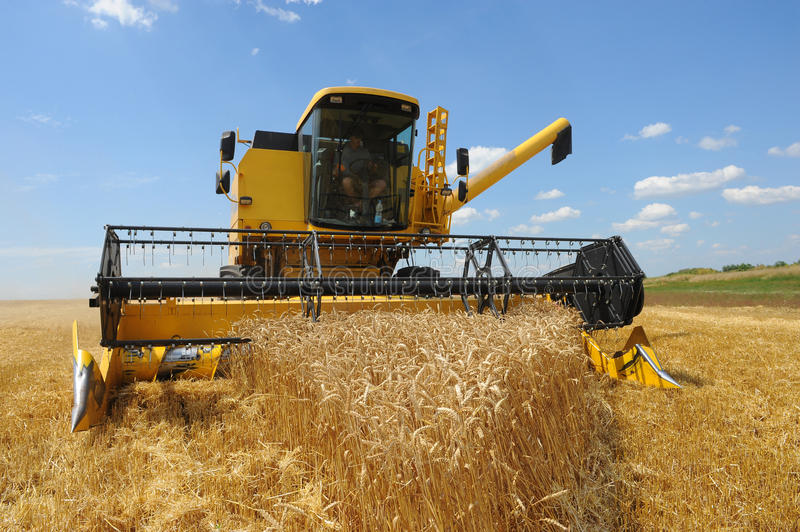 Combine harvesting stock images