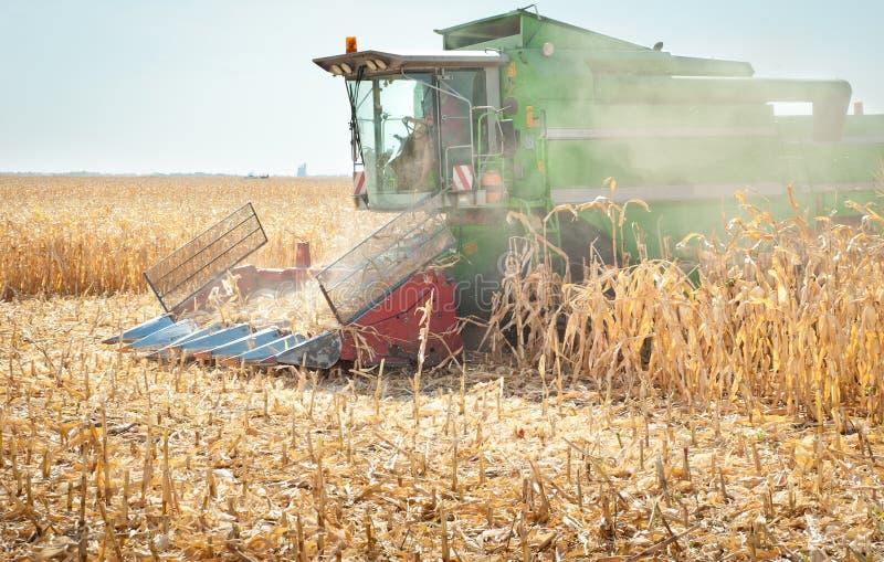 Download Combine harvesting corn stock photo. Image of crop, dust - 26581242
