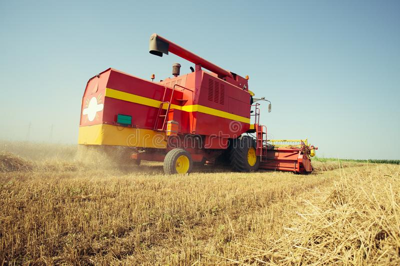 Combine harvesting in a field of golden wheat. On the blue sky royalty free stock photography
