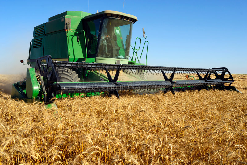 Download Combine harveting stock photo. Image of produce, golden - 2529512