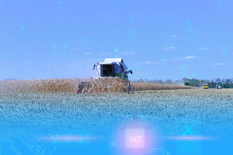 combine management and harvesting using Internet of things technologies without human intervention. Future Opportunities in the Ag royalty free stock photo