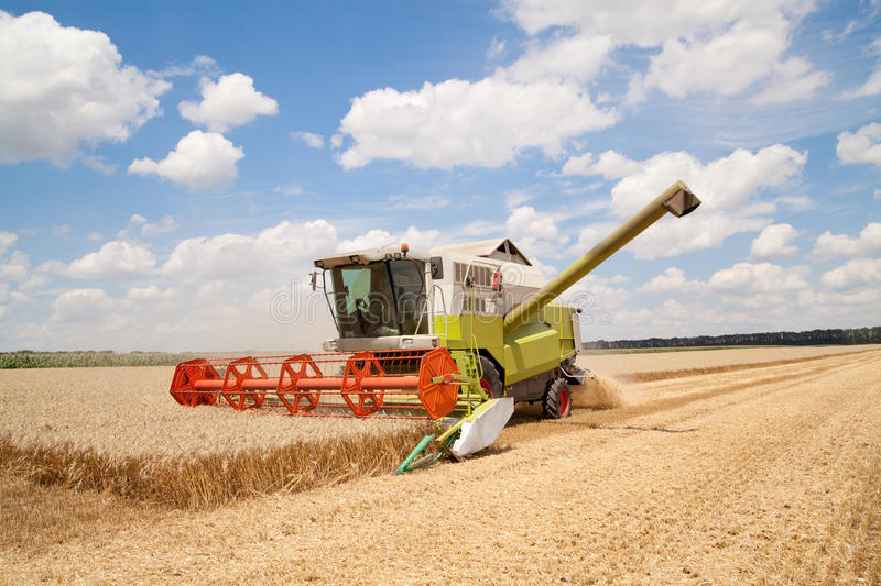 Download Combine working stock image. Image of gold, grain, cutting - 34984431