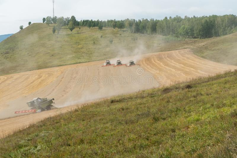 Combines collects the stubble remains in clouds of dust on the cutover field during harvesting stock image