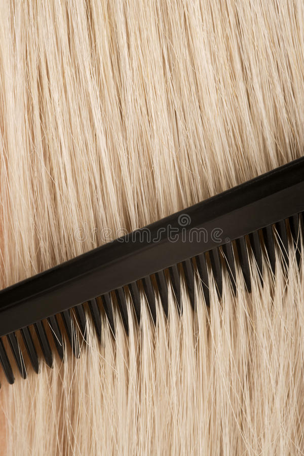 Download Combing blond hair stock photo. Image of beauty, plastic - 12315844