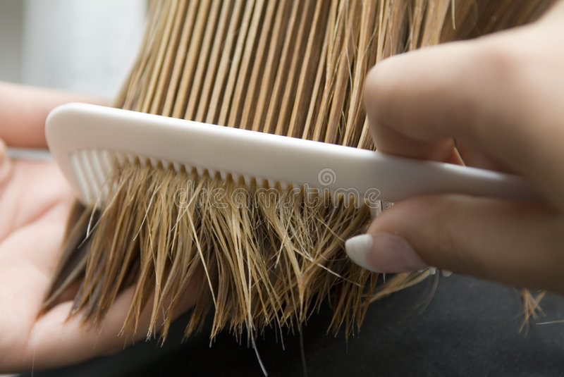 Combing Of Hair Royalty Free Stock Images
