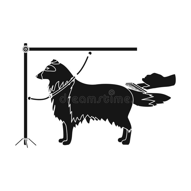 Combing a pet`s fur, a dog in a stylish salon. Pet,dog care single icon in black style vector symbol stock illustration. Combing a pet`s fur, a dog in a stylish royalty free illustration