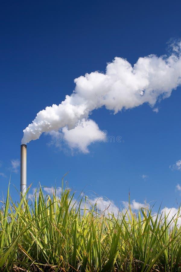 Combustible organique photos stock
