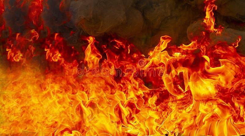 Combustion de flammes du feu images stock