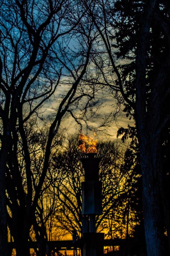 Combustione della torcia come insiemi del sole dietro gli alberi fotografia stock libera da diritti