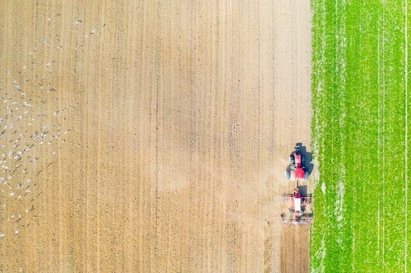 Comcept di agricoltura Trattore che coltiva il paesaggio aereo del terreno coltivabile Uccelli nel campo immagine stock