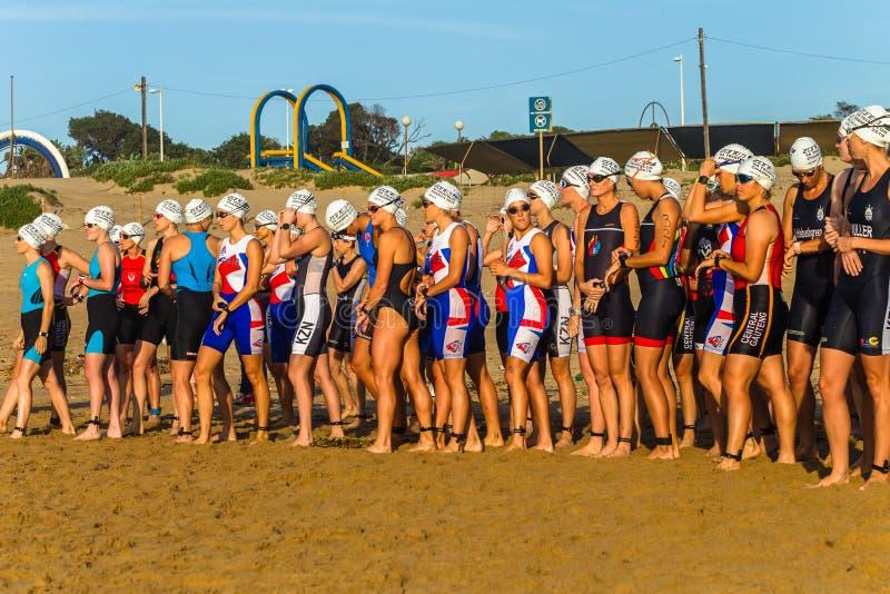 Começo da nadada do oceano das mulheres dos campeões do Triathlon imagem de stock royalty free