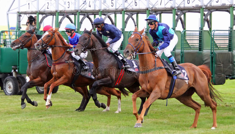 Começo de uma corrida de cavalos imagem de stock royalty free