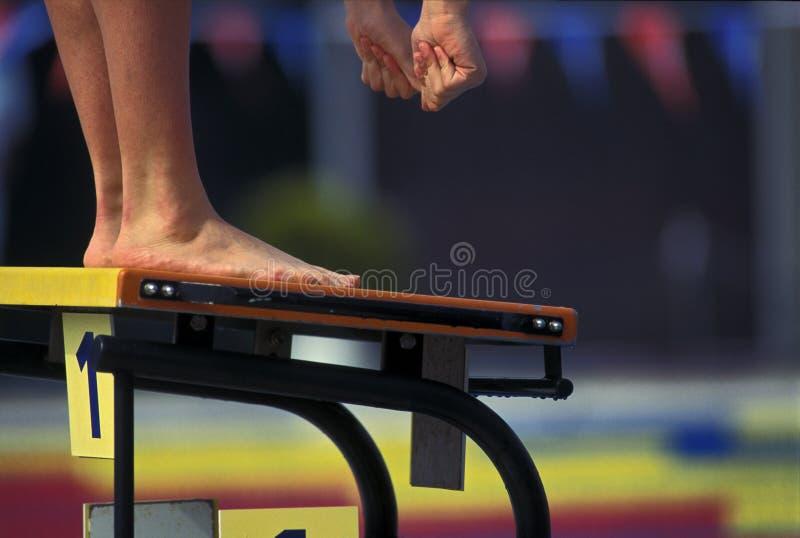 Começo do nadador fotografia de stock