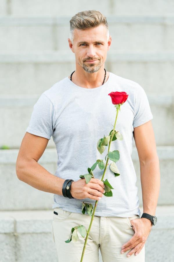 Come essere romantico Signore romantico Macho sicuro maturo dell'uomo con il regalo romantico Tipo bello con il fiore rosa immagini stock