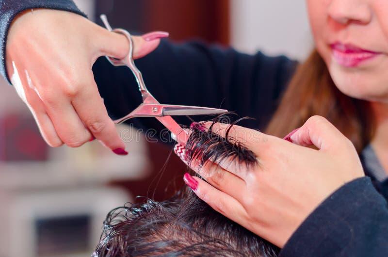 Come fare un taglio di capelli piacevole, capelli fra le dita e le forbici immagine stock
