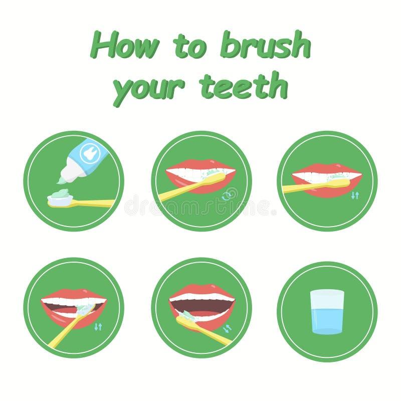 Come spazzolare la vostra istruzione graduale dei denti Cura dentale illustrazione vettoriale