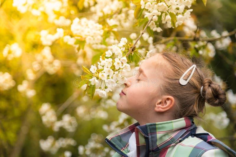 Come taste the spring! stock photos