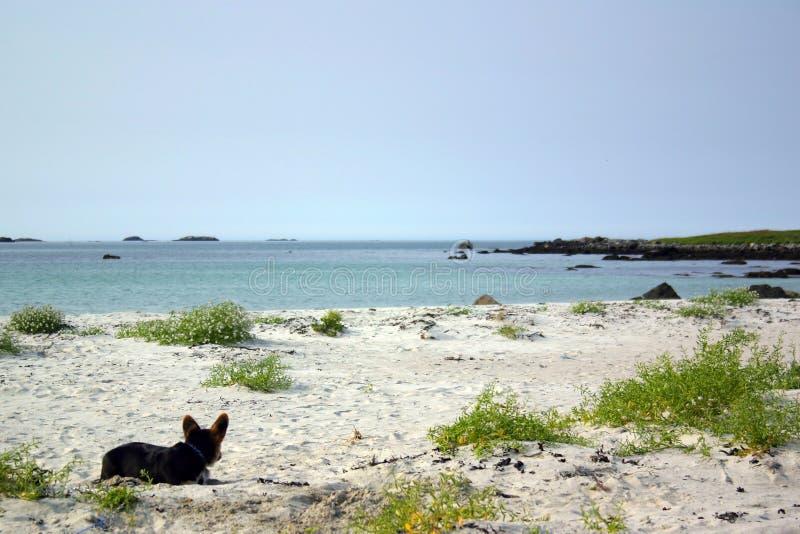 Come una spiaggia soleggiata in Creta, ma non fotografia stock libera da diritti