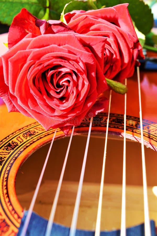 Comemorando a felicidade pela música, símbolos imagem de stock royalty free