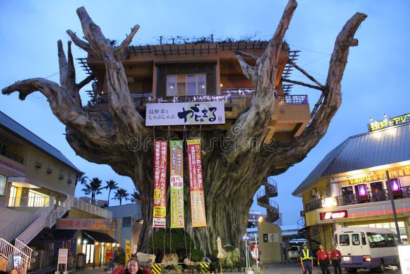 Comensal Okinawa Gajumaru Treehouse Restaurant de la casa del árbol de Gajumaru fotos de archivo libres de regalías