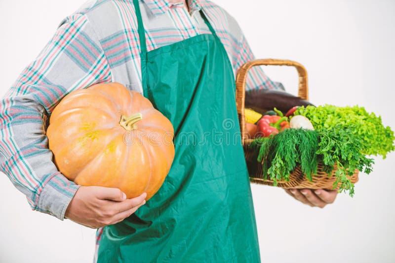 Comenzando d?a con la comida sana comida estacional de la vitamina Fruta y verdura ?til Granjero del hombre Festival de la cosech imagenes de archivo