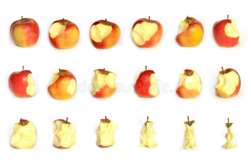Comer de Apple fotografia de stock