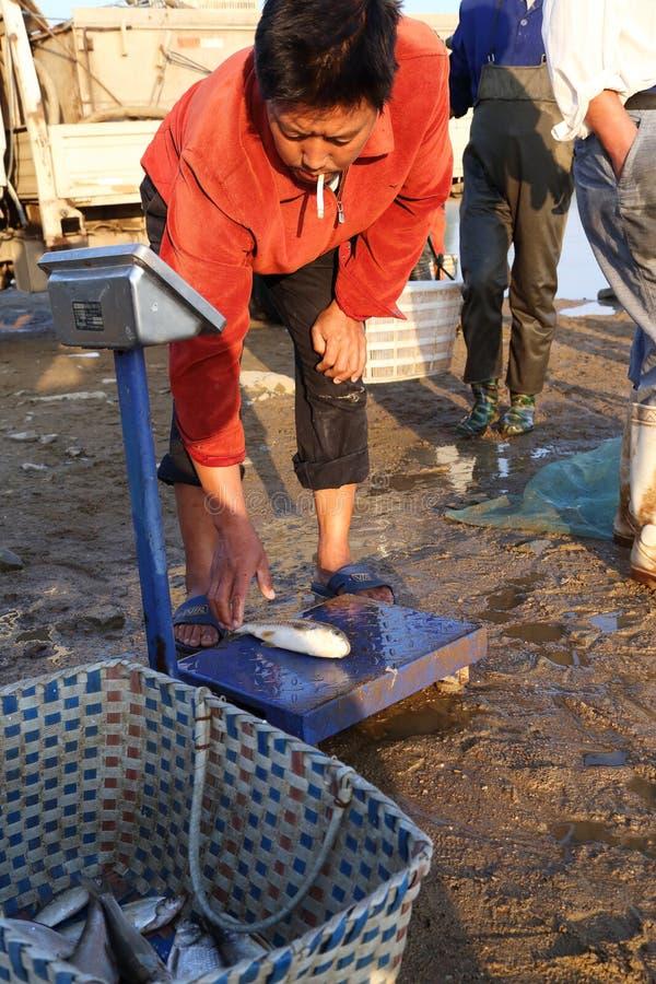 Comerciante de la pesca fotografía de archivo