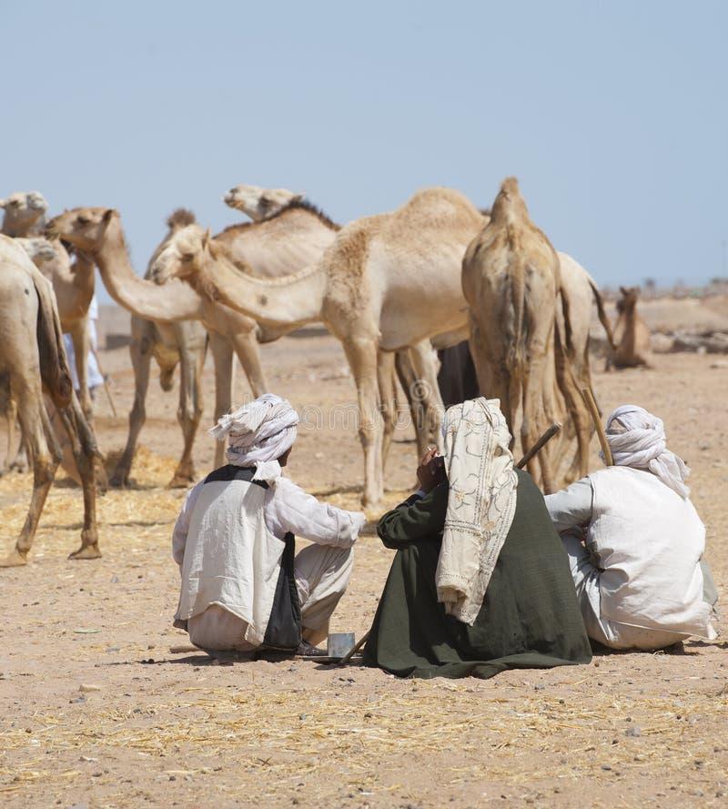 Comerciantes beduínos em um mercado do camelo imagem de stock