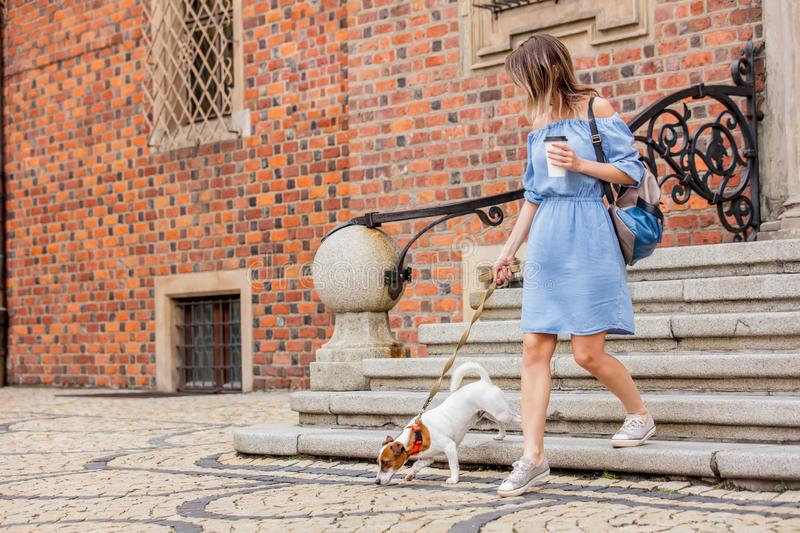 Comes down the stairs with a dog and a cup of coffee stock photos