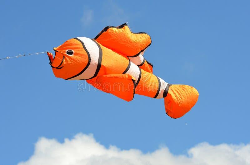Cometa anaranjada de los pescados fotos de archivo