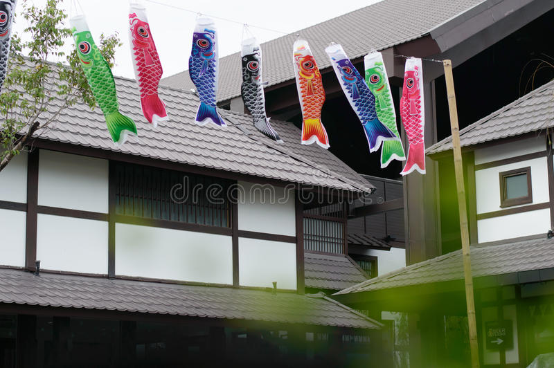 Cometa del japonés de los pescados foto de archivo libre de regalías