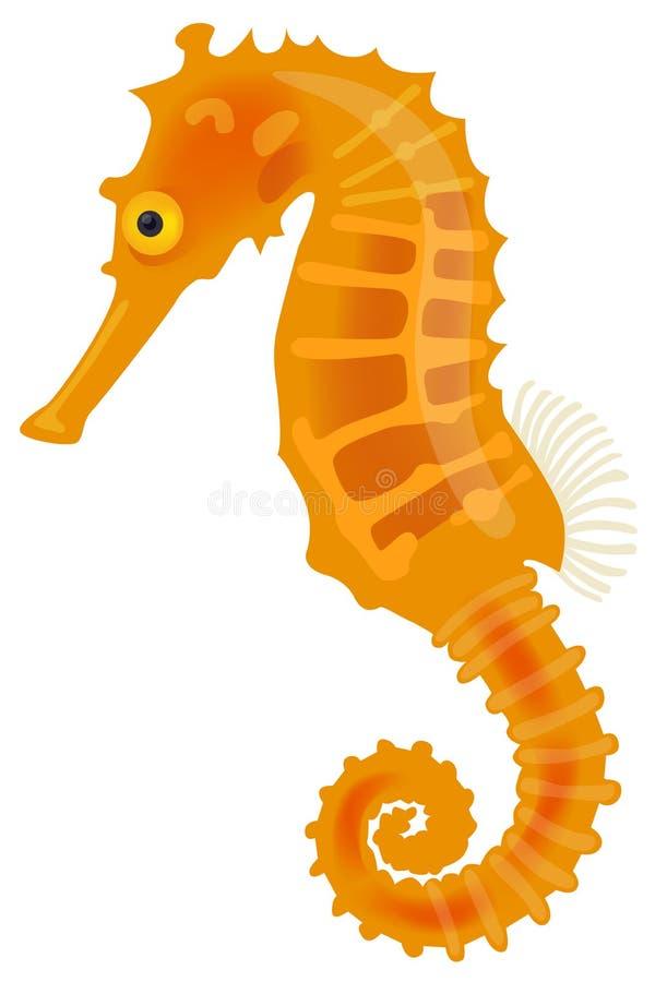 Cometa del mar Horse stock de ilustración