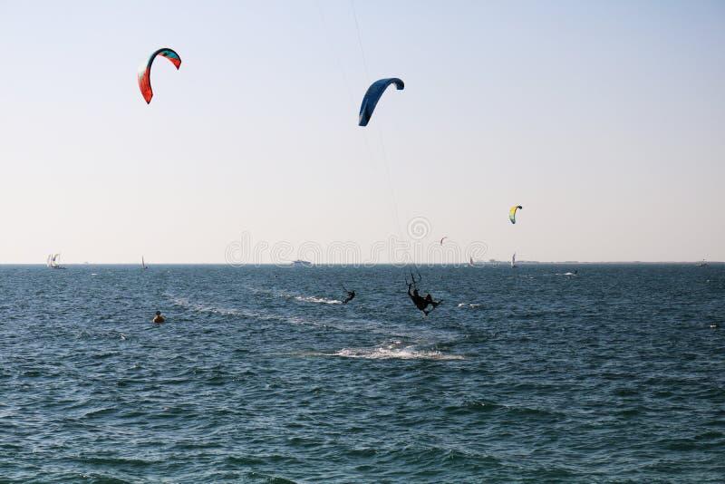 Cometa que practica surf en una playa en Dubai foto de archivo libre de regalías