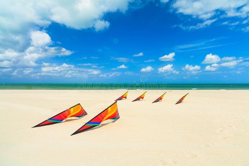 Cometas de la playa fotografía de archivo libre de regalías