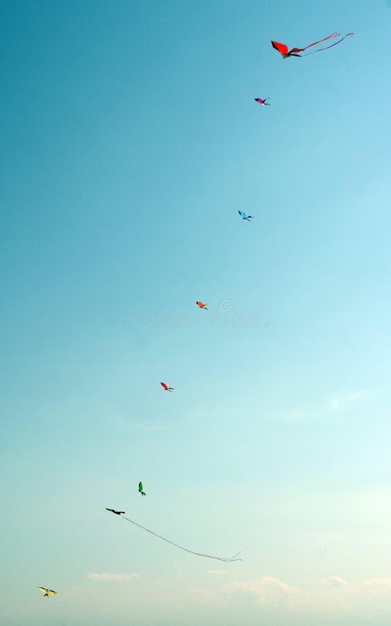 Cometas del vuelo fotografía de archivo