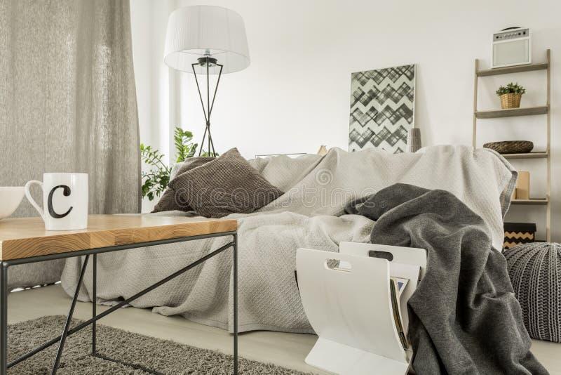 Comfortabel huisbinnenland met bank stock afbeeldingen