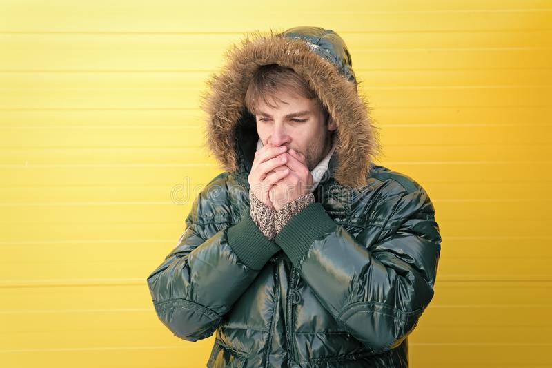 Comfortable winter clothing. Winter stylish menswear. Man bearded hipster wear warm jacket with fur yellow background. Guy wear warm jacket with hood. Feel royalty free stock image