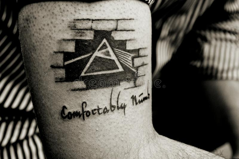 Comfortably Numb. royalty free stock photos