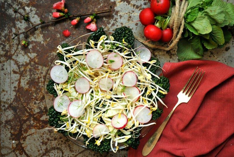 Comida alcalina, sana: brote de las sojas con la ensalada del rábano y de la col rizada foto de archivo