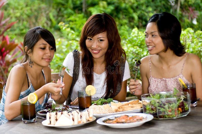 Comida campestre con los amigos imagen de archivo libre de regalías