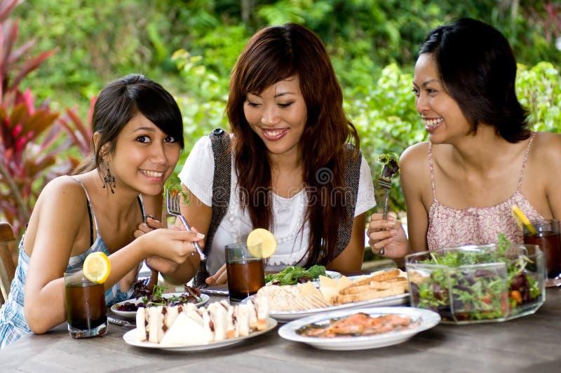 Comida campestre con los amigos fotografía de archivo
