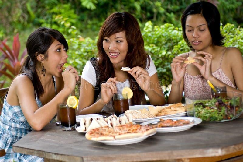 Comida campestre con los amigos imagen de archivo
