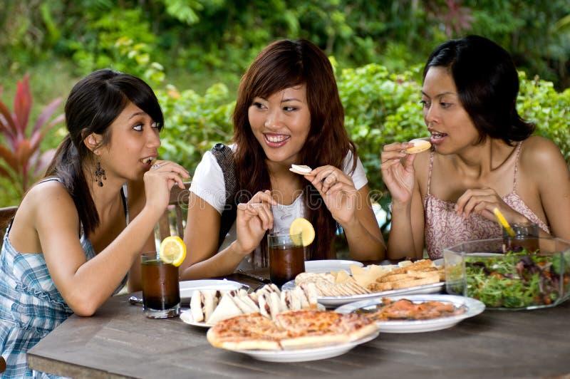 Comida campestre con los amigos fotos de archivo