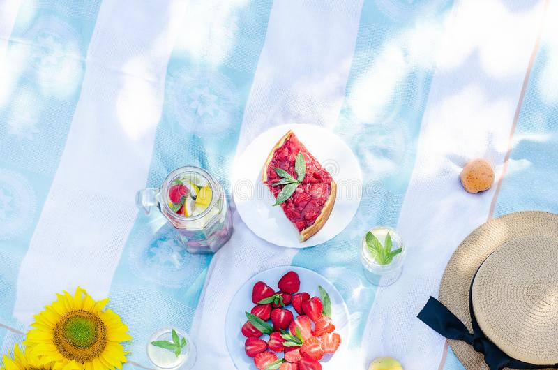 Comida campestre del verano con la comida, las frutas y los accesorios brillantes y sabrosos fotos de archivo libres de regalías