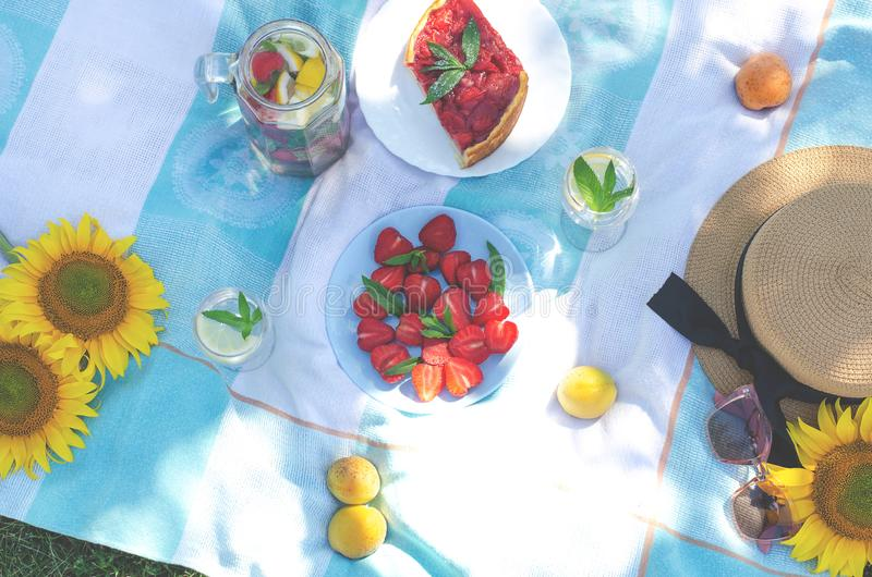 Comida campestre del verano con la comida, las frutas y los accesorios brillantes y sabrosos fotografía de archivo